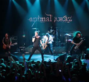 Animal_Djazz5