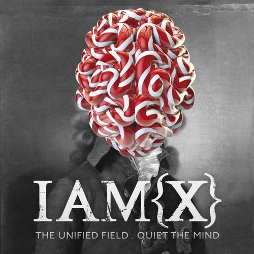 The+Unified+Field++Quiet+the+Mind+34d9acb1c0f4e2bdd3f4833deae38d